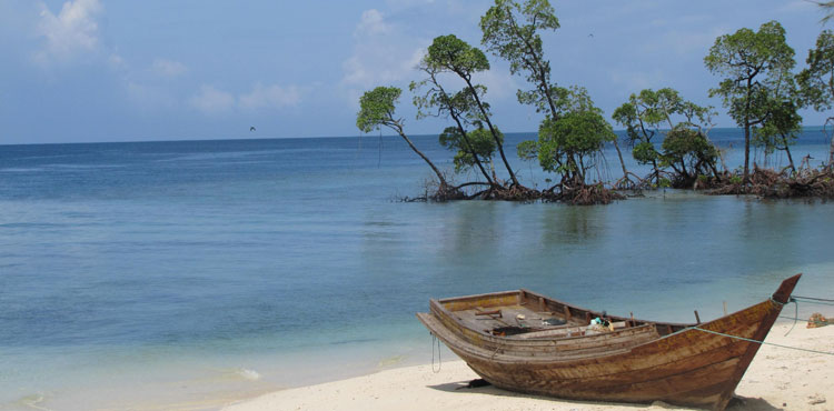 Paradise Called Andaman (6N/7D)