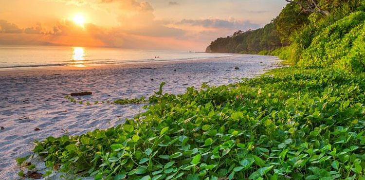 Andaman Standard Romantic Holiday Package (4N/5D)