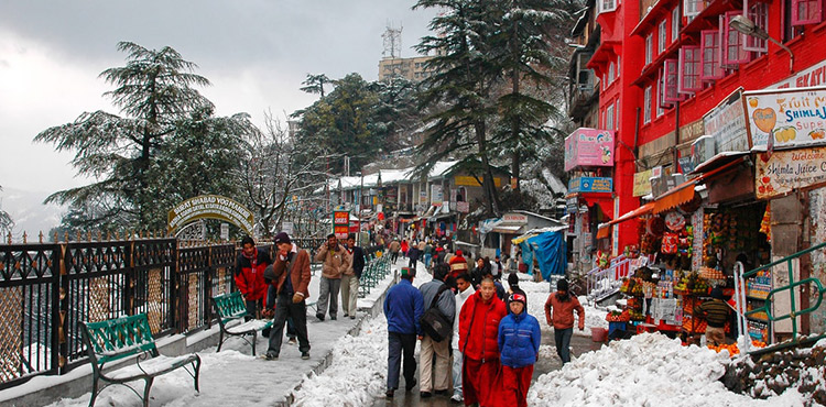 Luxury Package Gateway To Himalayas By Cab (6N/7D)