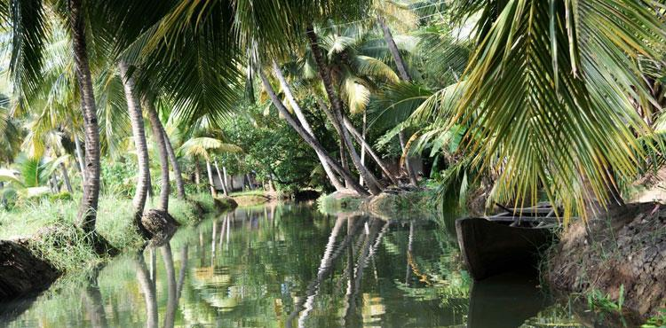 Kerala Economical Holiday Package (6N/7D)