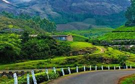 Munnar Valentine Special Package Ex Bangalore (2N/3D)