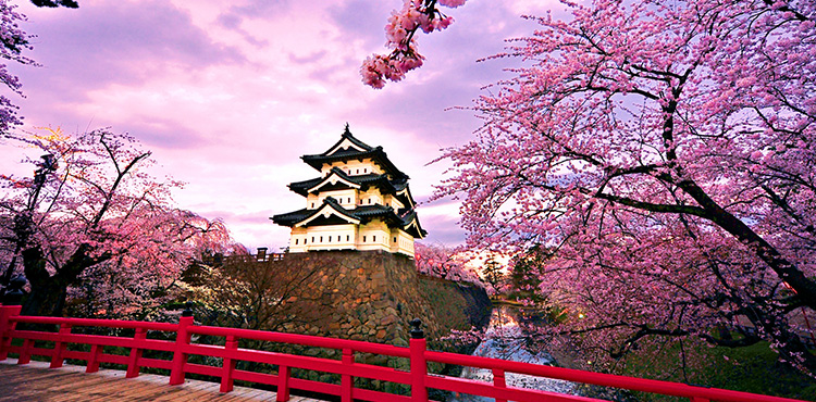 Japan Theme Park Package (6N/7D)