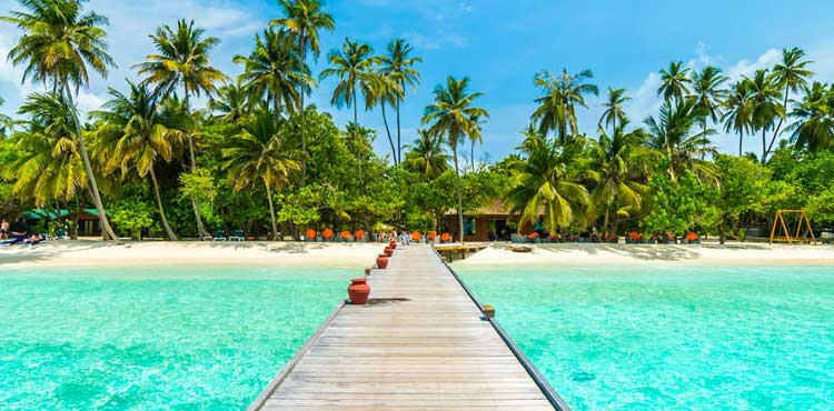 Vivanta By Taj Coral Reef - Maldives With Flight Ex Delhi (3N/4D)