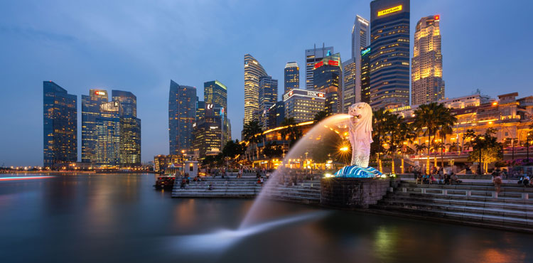 Best Of Singapore With Cruise Experience (6N/7D)