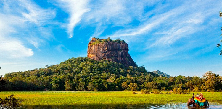 Wildlife Experience At Sri Lanka (6N/7D)
