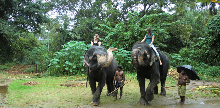 Ceylon Luxury Tour (5N/6D)